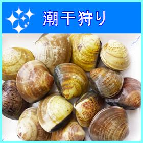 05-0017siohigari
